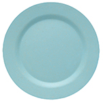 Turquoise Ecologie Dinner Plate