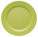 Cactus Ecologie Dinner Plate