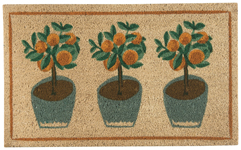 Potted Plants Doormat