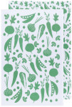 Greenbriar Color Center Printed Floursack Dishtowels Set of 2