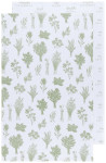 Sage Color Center Printed Floursack Dishtowels Set of 2